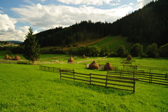 Mountain valley landscape Royalty Free Stock Photography