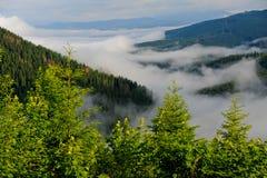 Mountain valley landscape. Early morning fog and cloud mountain valley landscape. Ukraine, Karpaty.r Stock Photos