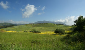 Mountain Valley - Landscape, Island Sicily Royalty Free Stock Photography