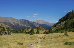 Mountain valley in Pyrenees near Coma Pedrosa peak Royalty Free Stock Images