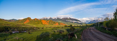 Mountain Valley Red River at sunset, dirt road, grazing cows in. The background village, red mountains, snow-capped mountains with clouds. River Valley of Kyzyl Stock Images