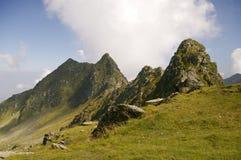 Mountain valley in romanian carpathians stock image