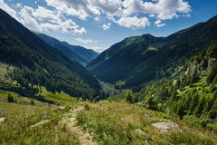 Mountain valley in a summer day Stock Photography