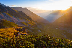 Mountain valley at the sunrise Stock Images
