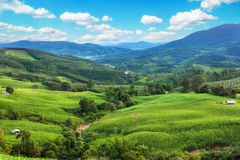 Mountain valley during sunrise. Natural summer landscape Royalty Free Stock Photography