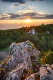 Mountain valley during sunrise. Natural summer landscape in Slov Stock Photos