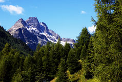 Mountain in Valtellina stock images