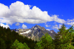 Mountain in Valtellina Royalty Free Stock Photos