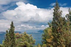 Mountain vegetation of Crimea Royalty Free Stock Images