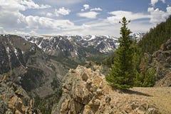 Mountain View élevé au timberline Photographie stock