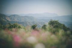 Mountain View на Khao Kho стоковые фотографии rf