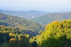 Mountain View осени Стоковое Фото