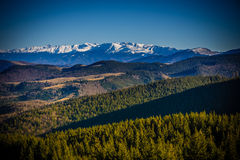 Mountain View от Paltinis Стоковое фото RF
