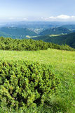 Mountain view Stock Photography