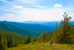 Mountain view. View from the highest peak in all of Stevens County, WA royalty free stock images