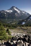 Mountain view Vertical Cascade Range Oregon Royalty Free Stock Photos