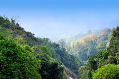 Mountain view. Intanon Mountain, Chiangmai, North of thailand Royalty Free Stock Photography
