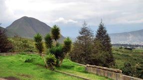 Mountain View Fotografia de Stock Royalty Free