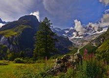 Mountain View Fotografía de archivo libre de regalías