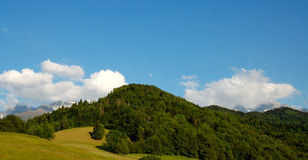Mountain view. Beautiful view of a mountain forest at high altitude Stock Photography