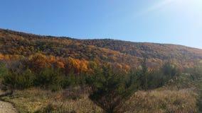 Mountain View Stockbilder