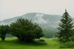 Mountain View fotografie stock libere da diritti