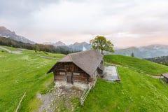 Mountain View alle montagne delle alpi della foresta Fotografia Stock Libera da Diritti