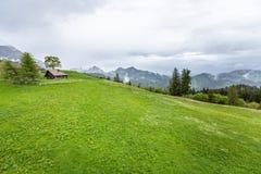 Mountain View alle montagne delle alpi della foresta Fotografie Stock