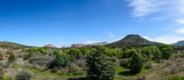Mountain view in Arizona USA. Red desert on the foreground fully covered green desert plants Stock Images