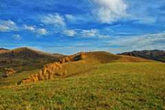 Mountain view in autumn outdoor. Tress and grass Royalty Free Stock Photos