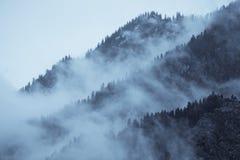 Mountain View avec la brume et la forêt Photographie stock libre de droits