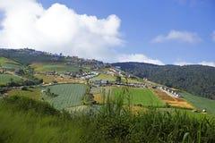 Mountain View avec le chemin chez Phu Tubberk, point de repère de touristes de province de Phetchabun en Thaïlande Photographie stock libre de droits