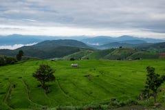 Mountain View, bello paesaggio Immagine Stock