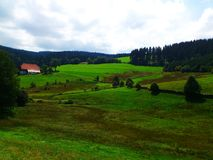 Mountain View- Black forest. Top view for the Black forest - Germany Stock Photo