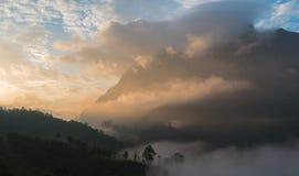 Mountain View bonito na manhã Imagem de Stock Royalty Free