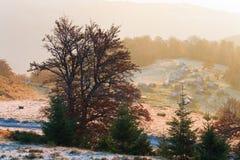Mountain View brumeux de matin d'automne Image libre de droits