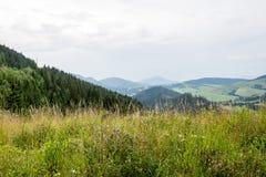 Mountain View brumoso de la mañana Fotografía de archivo libre de regalías