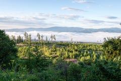 Mountain View brumoso de la mañana Fotografía de archivo