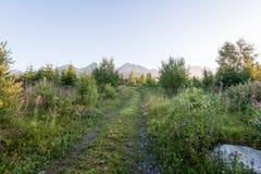 Mountain View brumoso de la mañana Fotos de archivo libres de regalías