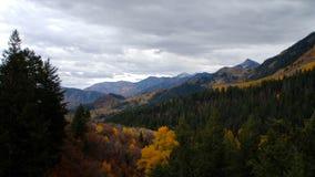 Mountain View cênico com árvores do outono vídeos de arquivo