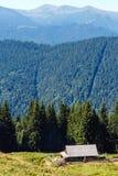Mountain View Carpathian, Ucrânia do verão Fotografia de Stock Royalty Free