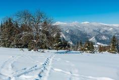 Mountain View carpathien neigeux d'hiver de plateau alpin garde photos libres de droits