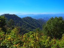 Mountain view. At Chiangmai Royalty Free Stock Image