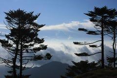 Mountain View con gli alberi ed il cielo blu Immagini Stock Libere da Diritti