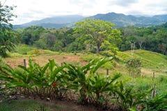 Mountain View - Costa Rica Royalty Free Stock Photo
