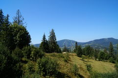 Mountain View covered with green forest Stock Photo
