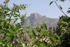 MOUNTAIN VIEW IN CYPRUS WORDT GEVESTIGD DAT Stock Foto