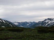 Mountain View d'été Image stock