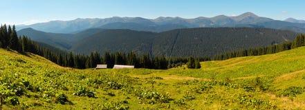 Mountain View d'été carpathien, Ukraine photos libres de droits