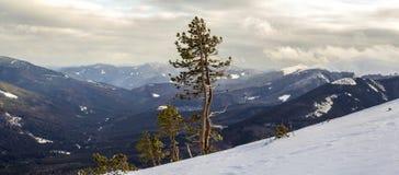 Mountain View d'hiver en montagnes carpathiennes avec le nuage dramatique image libre de droits